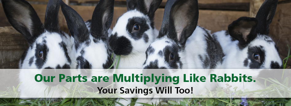 Our Parts are Multiplying Like Rabbits. Your Savings Will Too!